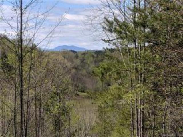 Camp Creek Rd 5